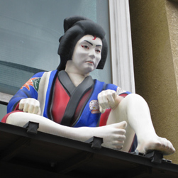 shira_kiku.jpg
